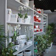 стеллажи для цветочного магазина